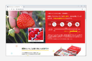 通販サイトウェブデザイン(澳原いちご農園様)