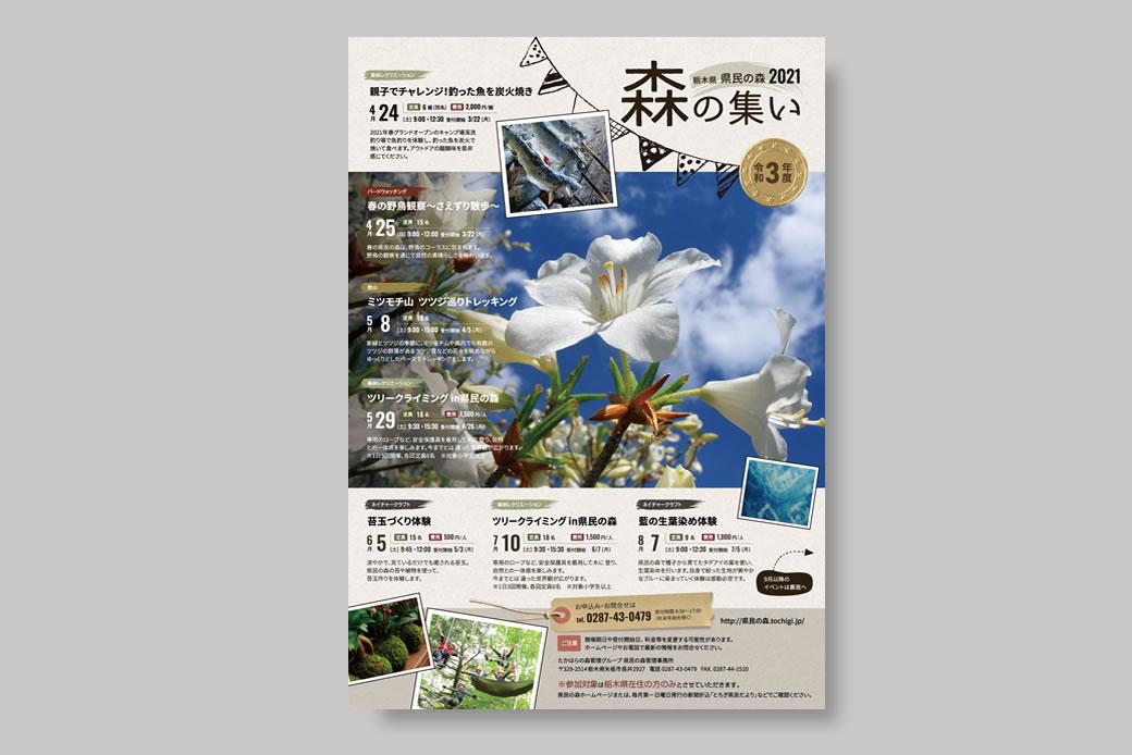 栃木県県民の森/フライヤーデザイン